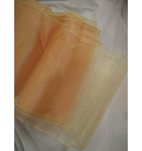 Ceinturage en Organza orange clair